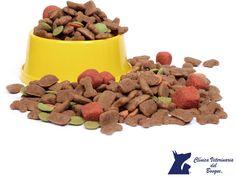 https://flic.kr/p/N7W6Zh | Alimento causante de alergias. CLÍNICA VETERINARIA DEL BOSQUE 2 | Alimento causante de alergias. LA MEJOR VETERINARIA DE MÉXICO. Revisa el alimento de tu mascota  y elimina todos los alimentos que contengan gluten, trigo u otros rellenos de cereales. Estos productos podrían estar causando una leve reacción alérgica. En Clínica Veterinaria del Bosque te recomendamos siempre consultar a tu médico veterinario. www.veterinariadelbosque.com #veterinariadelbosque
