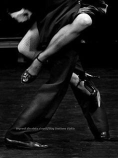 the passion of Tango<<<I don't ballroom dance, but you get the gist Lindy Hop, Shall We Dance, Lets Dance, Black White Photos, Black And White Photography, White Art, Dance Art, Ballet Dance, Hip Hop