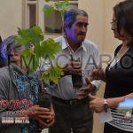 Entregas de plantas de vid a productores de Medanitos