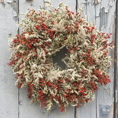 Wild Rose Hips and German Statice Christmas wreath. Free shipping.