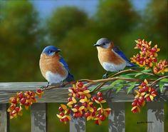 """Harold & Gracie"" by Bradley Jackson ~ birds"