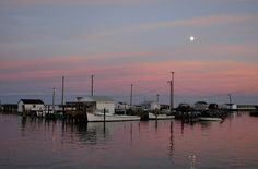 Tangier Island    Location: U.S. Atlantic Coast, just off Virginia  Size: Three miles long by one mile wide  Population: 727