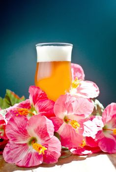 "Hibiscus Mango Blonde.  This delicious blonde ale was featured in Joe Strange's article, ""It's Trouble, Brewing in Paradise"" in the March/April 2012 Zymurgy magazine, on page 40."