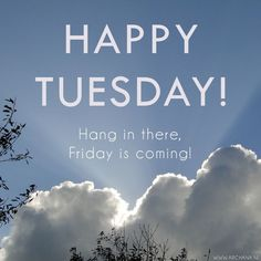Happy Tuesday! Hang In There! Friday's Coming