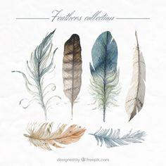 main la collecte des plumes peintes Vecteur gratuit