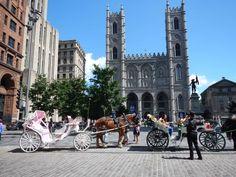 7. Montréal - Vieux Montréal Amsterdam, Carcassonne, Reportage Photo, New York, Montreal, Street View, Photos, Newspaper, Old Montreal