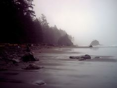 I'd take the foggy NW coast over a tropical beach. Oregon Coast, Pacific Coast, Pacific Northwest, West Coast, Oh The Places You'll Go, Great Places, Wonderful Places, Beautiful Places, Seattle Washington