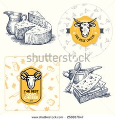 Cheese set - logo element, seamless pattern and sketch. Vector.