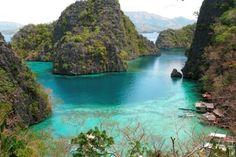 ReefStudy.com - Corals, Maui, Turtletown, Black rock, Beaches, Scuba diving.