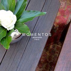 Deco lanzamiento fw15 SONSOLES Deco, Plants, Decor, Deko, Plant, Decorating, Decoration, Planets