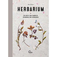 Buch Das kleine Herbarium_01