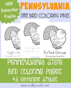 Ruffed Grouse Coloring Page Coloring Coloring Coloring Pages