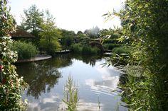 TEICH / Boomkamp garden HOLLAND