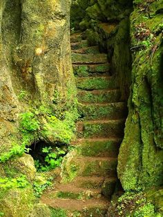 entrance to a fairy landscape , the stairs to the ancient riverndell elfish city or the staircase to sleeping beauty and her fairytale happy ending , there is magic here grimm and fairy photo art to inspire to dream The Secret Garden, Secret Gardens, Stairway To Heaven, Abandoned Places, Pathways, Stairways, Belle Photo, Beautiful Places, Beautiful Stairs