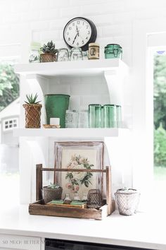 Green decor & succul