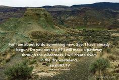 Wilderness - Isaiah 43:19