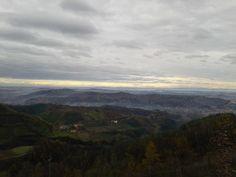 vineyards from Cassinasco