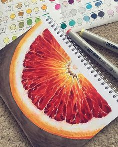 Fruit studies in guashe - A Level Art Sketchbook - Copic Marker Art, Marker Kunst, Copic Art, Copic Kunst, A Level Art Sketchbook, Sketchbook Drawings, Polychromos, Color Pencil Art, Food Drawing