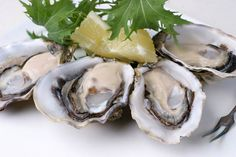 Learn to Tell the Difference Between Types of Oysters