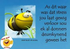 Stres Cool Words, Wise Words, Afrikaanse Quotes, Special Words, Vinyl, Funny Pictures, Funny Pics, Haha, Funny Quotes