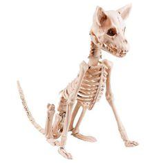 Sittande Hund Skelett Prop - Partyhallen.se Delena, Lion Sculpture, October, Autumn, Statue, Art, Anatomy, Art Background, Fall Season