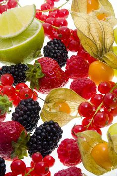 BERRIES. Contain the lowest carbs for fruits. Most fruits are actually pretty high in carbs.