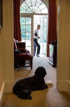 I love my President.