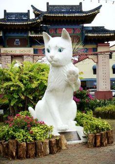 Meow Meow...