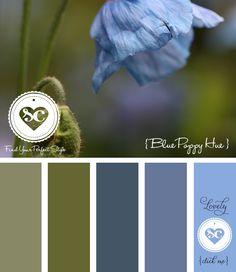 034 Blue Poppy Hue by Asmalina© 2012 Sorbetcolour ™