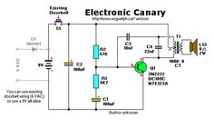 Electronic Canary Doorbell