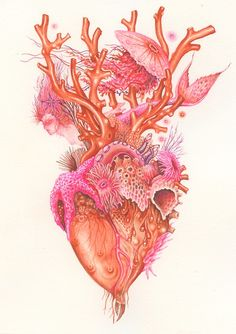 Anatomical heart illustration by Wendy Wallin Malinow, gouache, coral corazon, Art And Illustration, Illustrations, Ocean Tattoos, Mermaid Tattoos, Turtle Tattoos, Tribal Tattoos, Frida Art, Kunst Tattoos, Symbol Tattoos