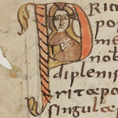 """Initial """"P"""" - from an 8th century manuscript from St Gallen, by e-codices, via Flickr.  Lovely and stylised!"""