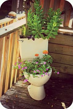 Toilet into a flower pot? Yes. I thought this was a cute idea. I love it