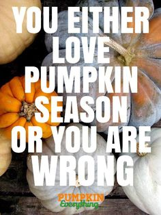 You either love pumpkin season, OR you are WRONG! October Country, Autumn Aesthetic, Fall Pictures, Fall Harvest, Autumn Inspiration, Fall Pumpkins, Happy Fall, I Fall, Fall Baby