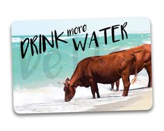 Drink More Water Fridge Magnet by BetterMagnets on Etsy Funny Magnets, Drink More Water, More Cute, Drinking Water, Cute Gifts, Cool Designs, Moose Art, Etsy Seller, Etsy Shop