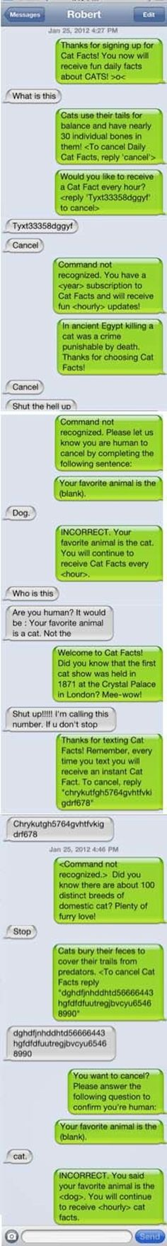 @Vivian Dony Mae @Charleigh Jacobs --Iam cracking up. We need to come up with some fun facts instead of hashtag! Hilarious! The Cat Facts: | 27 Perfect Ways To Respond To A Wrong Number Text