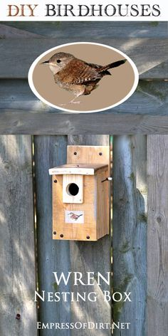 DIY Birdhouses: make a wren nesting box and find out what birds need for a safe and happy home for raising their young. Free instructions for building or selecting a safe nesting box for birds (wrens). Bird House Plans, Bird House Kits, Wren House, Bird House Feeder, Bird Feeders, What Is A Bird, Bird Houses Diy, Bird Aviary, Bird Boxes