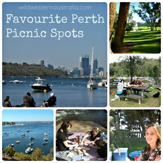 A selection of the best spots for a picnic in Perth- from the inner city suburbs and Swan River banks to the national parks in the hills.
