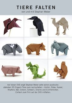 dvd animals stephan weber origami  Kimokame.com