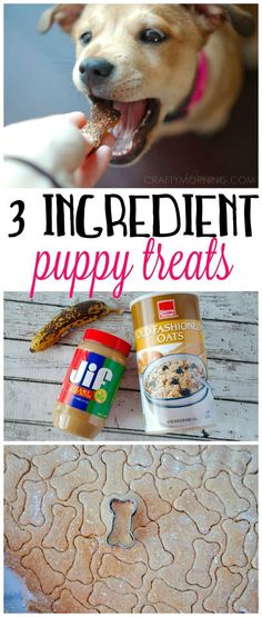 This 3 ingredient puppy treat recipe was a HIT with my dog! They used peanut bu… This 3 ingredient puppy treat recipe was a HIT with my dog! They used peanut butter, banana, and oats. A healthy alternative. Puppy Treats, Diy Dog Treats, Puppy Food, Homemade Dog Treats, Treats For Puppies, Dog Food Diy, Dog Biscuit Recipes, Dog Treat Recipes, Dog Food Recipes