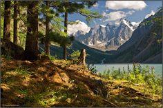 by Anya Grafova- One more time about Shavlinskoe lake (by Shishkin)