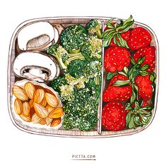 FOODS on Illustration Served