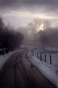Road, fence, Winter, mist, misty, snow, Fog, curve, breathtaking, stunning, clouds, sunbeams, photograph, photo