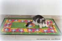 Kids Rugs, Cats, Home Decor, Gatos, Decoration Home, Kid Friendly Rugs, Room Decor, Cat, Kitty