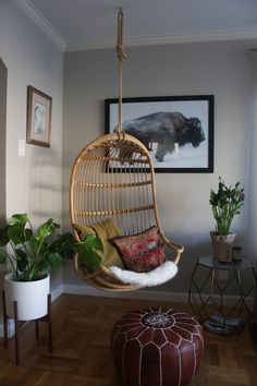 leather pouf + hanging chair + midcentury planter