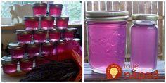 Ochutnali ste už levanduľový džem alebo levanduľové želé (tak ho voláme my doma)? Jeho príprava je celkom jednoduchá a ak sa vám levanduľa rozbujnela v záhrade, toto je výborný spôsob, ako ju spravovať. Džem je