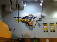 mural in northside high school gym 13'x 21' acrylic spray