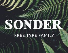 "Check out this @Behance project: ""Sonder - Free Type Family"" https://www.behance.net/gallery/41199179/Sonder-Free-Type-Family"