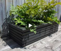 Build a chic and affordable wooden planter box with cuts of spruce, nails and a few coats of dramatic grey paint, with instructions from H&H stylist Peter Paquette. The rectangular box houses thre Outside Planters, Outdoor Planter Boxes, Trough Planters, Garden Planter Boxes, Cedar Planters, Wooden Planters, Building Planter Boxes, Bamboo Planter, Rectangular Planters