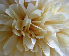 French Vanilla 1 pom by PomLove on Etsy Ivory Wedding Decor, Taupe Wedding, Wedding Colors, Wedding Reception, Rustic Wedding, Tissue Paper Tassel, Tissue Pom Poms, Paper Pom Poms, Baptism Party Decorations
